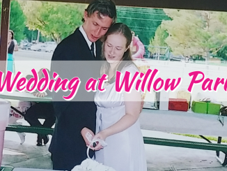 Wedding In Willow Park