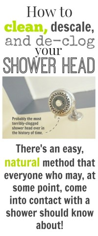 How to clean, descale, and unclog your shower head ...