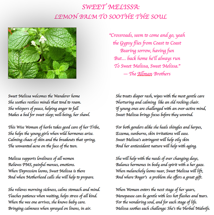 sweet melissa, lemon balm, soothes the soul, lemon balm hydorsol, calm stress anxiety