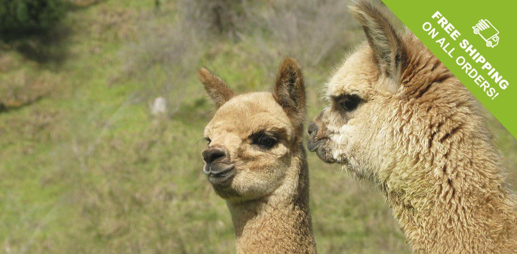 creekwater alpaca clothing made from