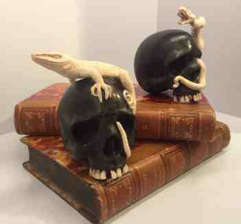 Two books with moose antler skulls with moose antler lizard and snake