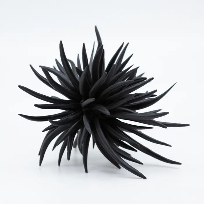 black-ceramic-walking-urchin