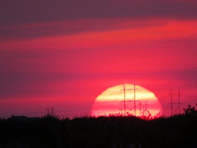 Prairie Sunset Pinky Road