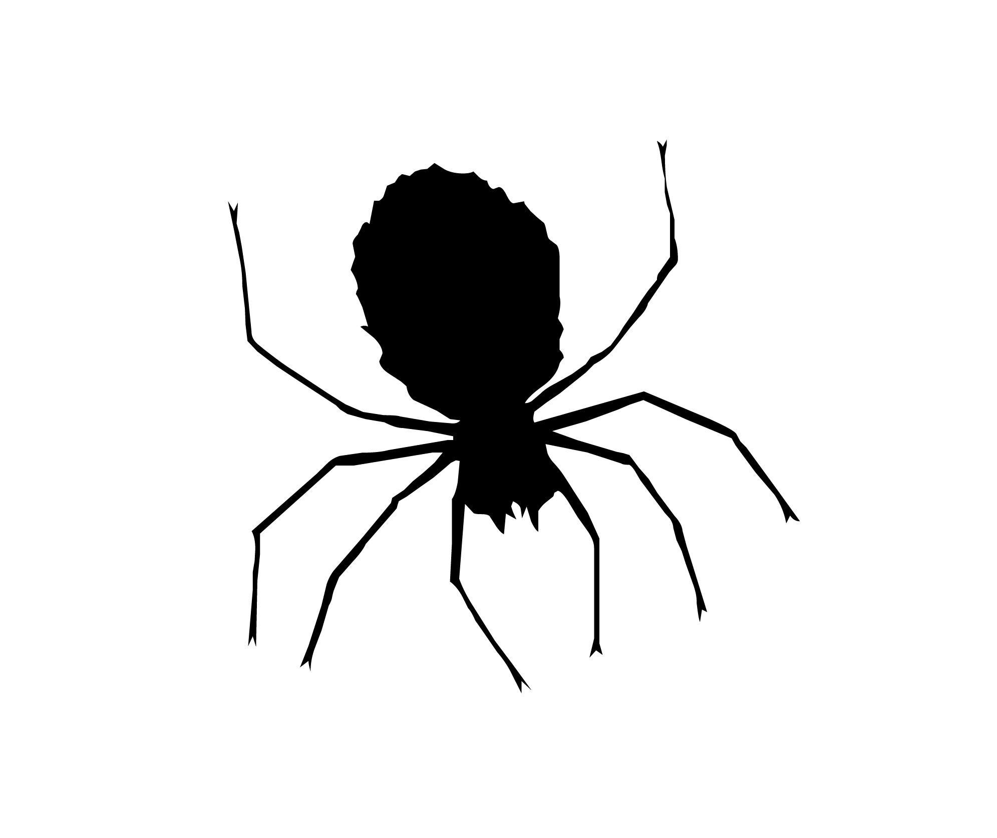 Image Of Clipart Spider