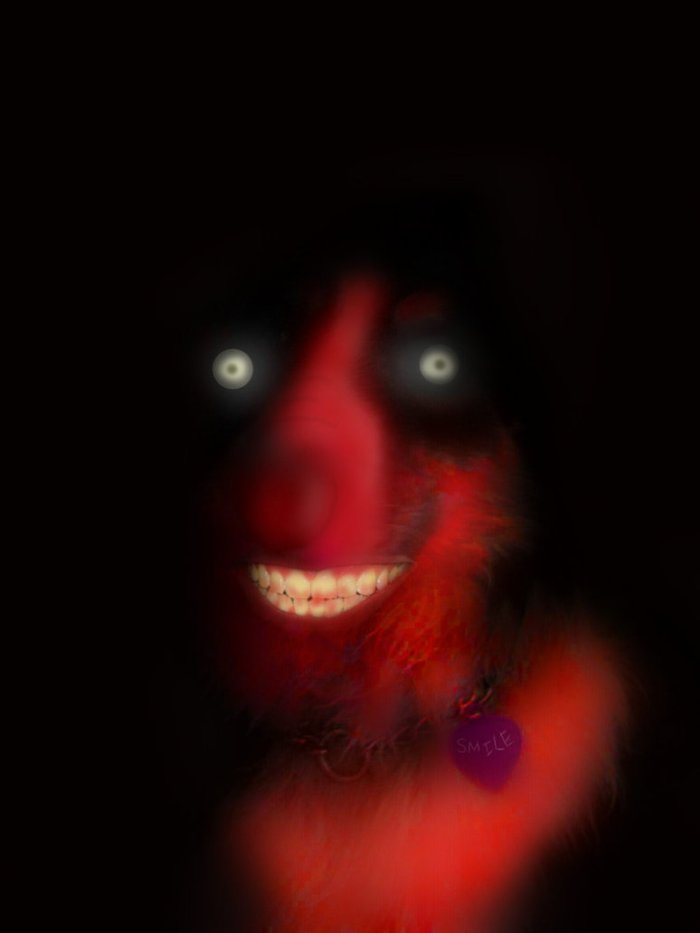 Smile Dog  Creepy Pasta Legends written by fans like you