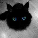 Imagen de perfil de Sofi