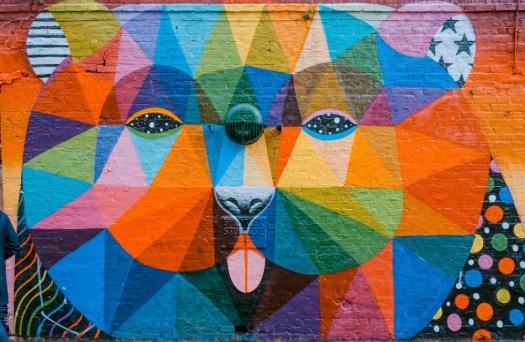 patchwork de couleurs sur un mur représentant un ours