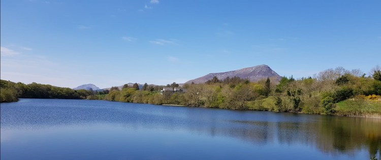 muckish from Roosky Lake