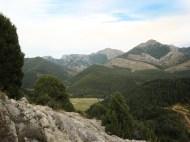 Crémenes, León sabinar, Juniperus thurifera 8648
