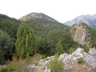 Crémenes, León sabinar y robledales, Serrialba 8652