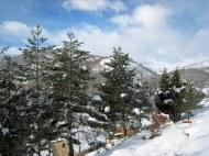 Crémenes sabina cerca de las casas 23 enero 2013 3676