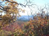 606-Perins-Peak-Lane, Durango, CO