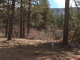233-Engine-Creek-Trail, Durango, CO