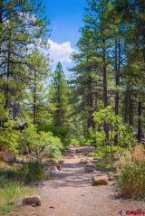 61-Edgemont-Meadows-Road, Durango, CO