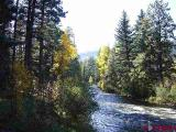 539-Coolwater-Road, Bayfield, CO