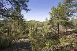 92-Boulder-View-Drive, Durango, CO