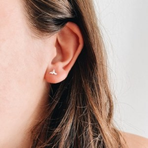 Pin Whale Silver Earrings - 186864 47cd00e6e0acee 500x500