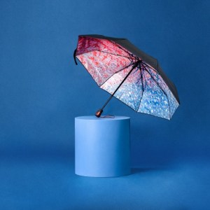 JUST ANOTHER WINTER – Compact Umbrella, Gift Box Included