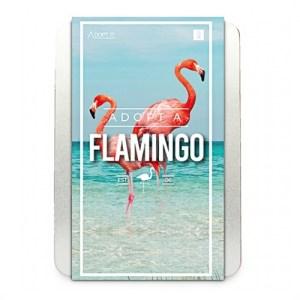Adopt a Flamingo (Pack of 5)