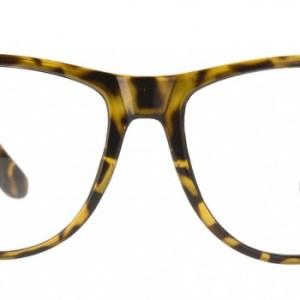 Blueshields London Sunglasses