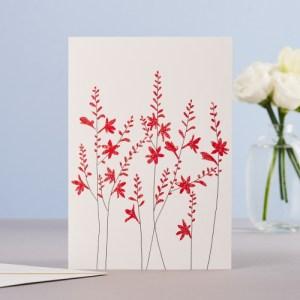 Croscomia Blank Greeting Card