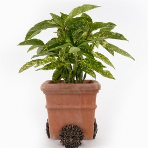 Green Man Plant Pot Feet – Set of 3