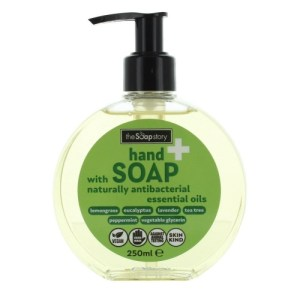 Naturally AntiBacterial HandSoap with Essential Oils 250ml – Pack of 6