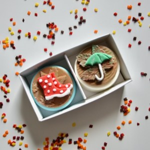 Autumnal Rainy Day Coated Oreo Gift Box