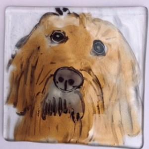Hairy dude dog coaster