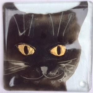 Black cat gold eyes