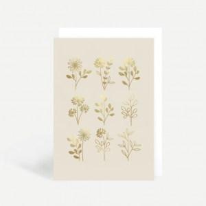 GA02 – Illustrated Flowers