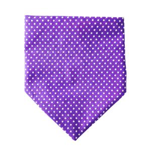 Dotty For You Collection – Royal Lavender Dog Bandana