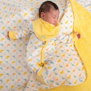 Ducks Pack of 2 Baby Dribble Bibs in Organic Cotton