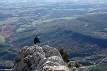 Sainte Victoire, escalade en terrain d'aventure