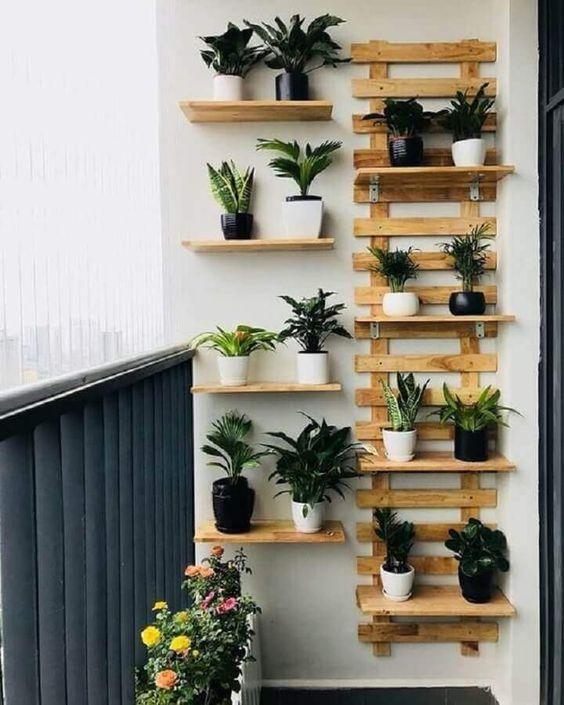 suporte de madeira com plantas