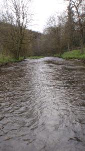 Downstream-wading
