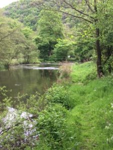 Cressbrook RiverBank