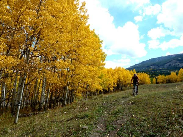 bike RE photo