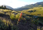 Prospect subdivision | Crested Butte, CO real estate