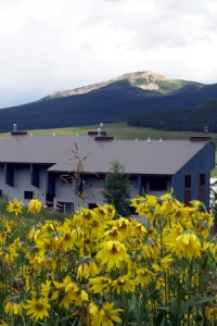 Elk Ridge 1 condos in Crested Butte