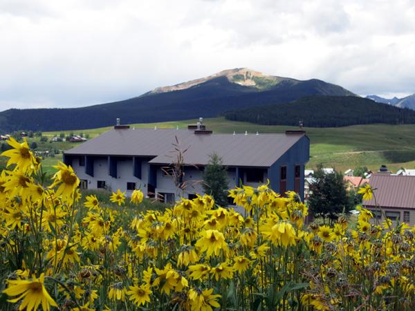 Elk Ridge condos crested butte real estate