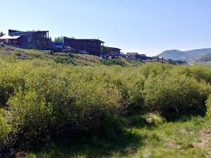 Crested Butte Neighborhood Spotlight:  Riverland