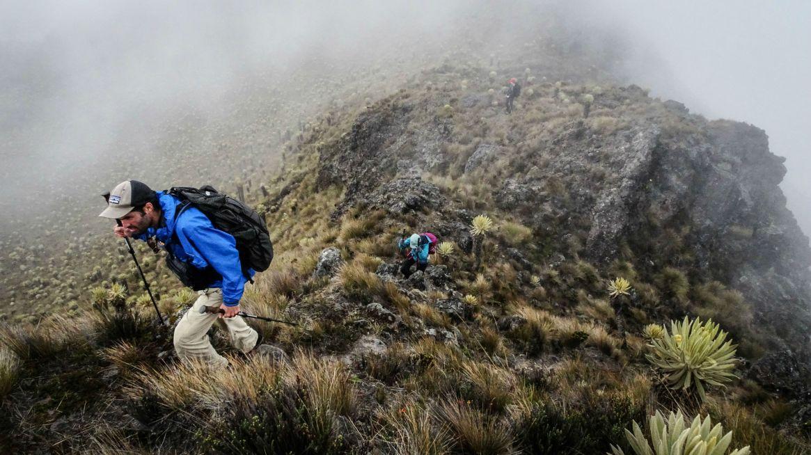 Hiking the Páramo