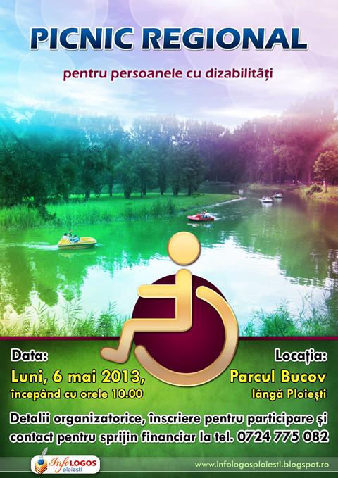 Picnic-dizabilitati-480