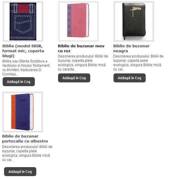 OK - BIBLII DE BUZUNAR