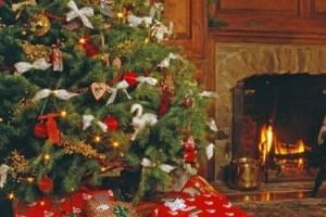 christmas-tree-faq