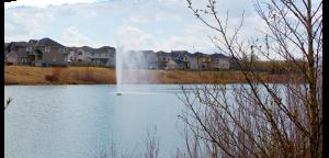 Crestmont Pond