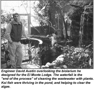 The alchemy of plant-treated sewage A visit with David Austin and his Living Machines