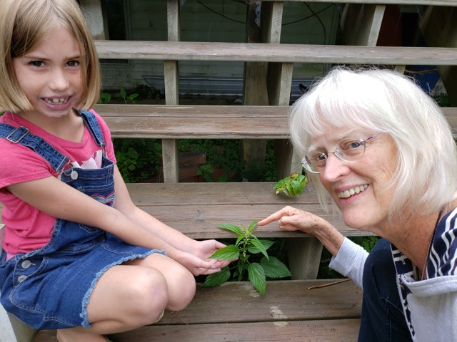 There's No Such Thing As A Weed: How to teach kids about herbs