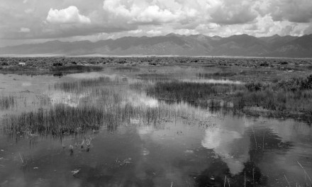 Why RWR's water export proposal is not a 'Win-Win' for the San Luis Valley